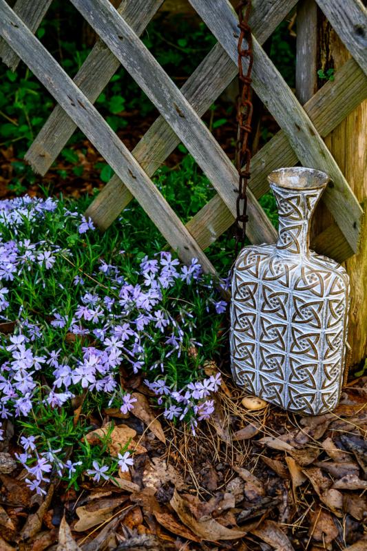 vase by ginnie lerch