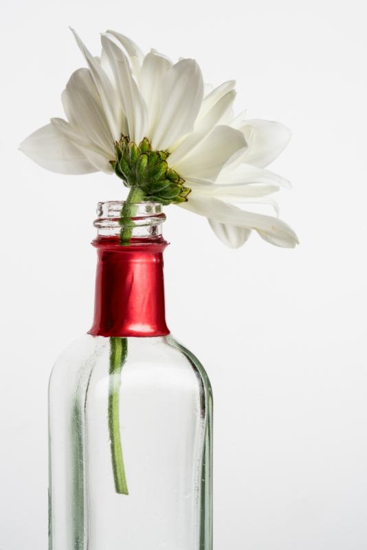 vase by lou mccorkle