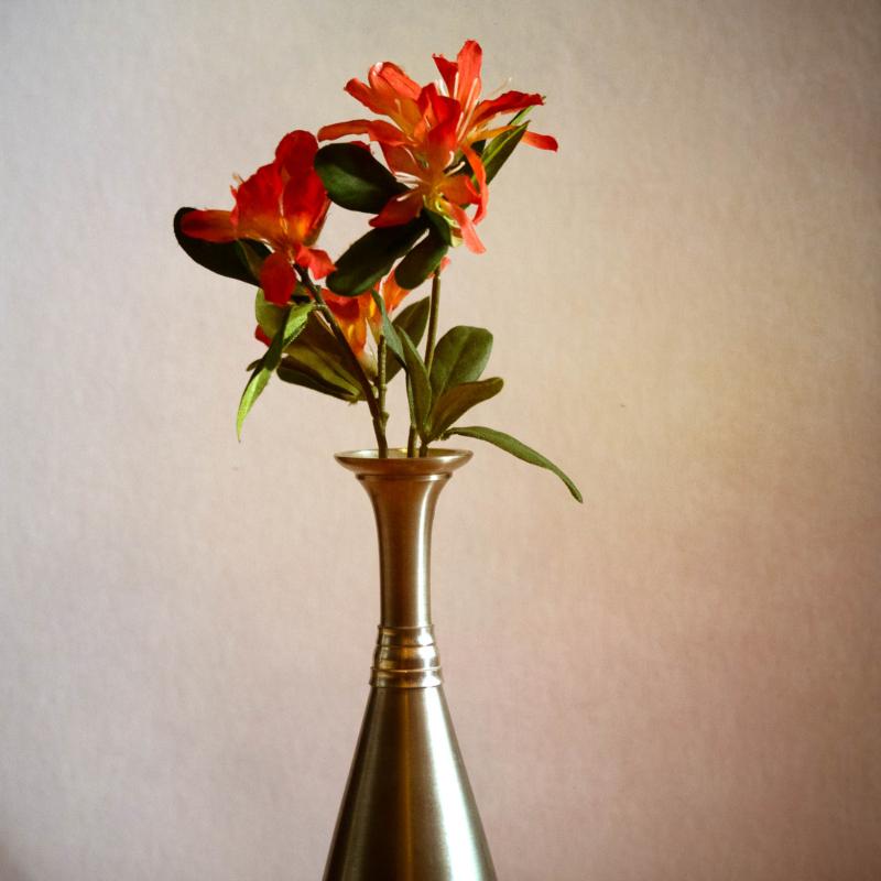vase by patricia dos santos paton