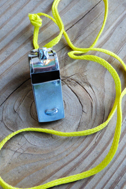 whistle by james a woods