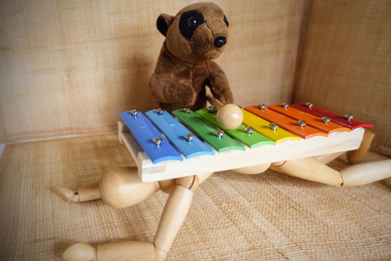 xylophone by jacki dalton.jpg