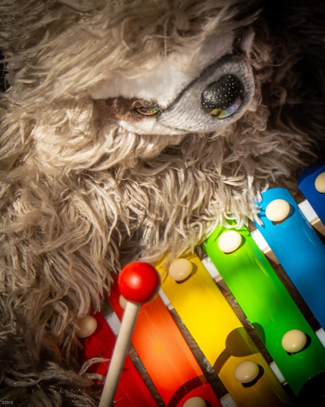xylophone by sandra nesbit